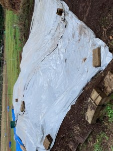 Manure pile covered with silver tarp