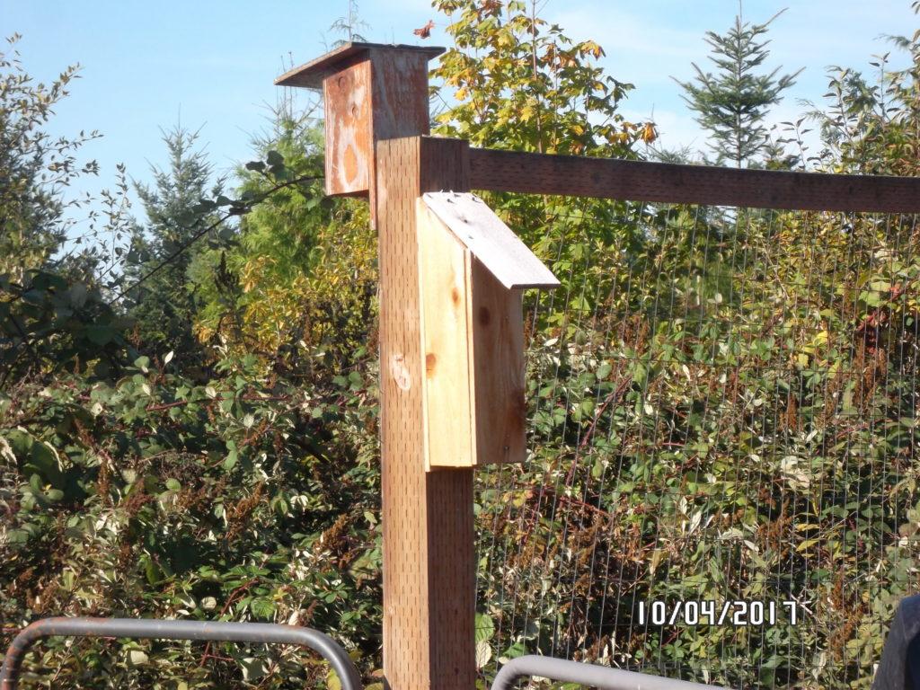 Springwater Western Bluebird Trail - Clackamas SWCD