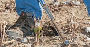 Soil tests are the first step in determining the health of your soils