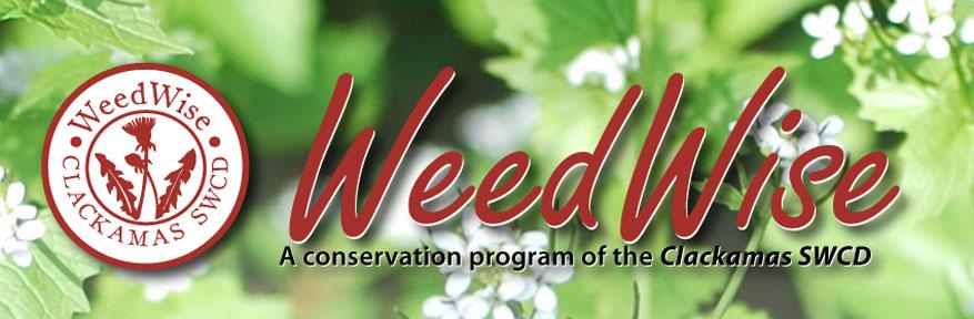 WeedWise header