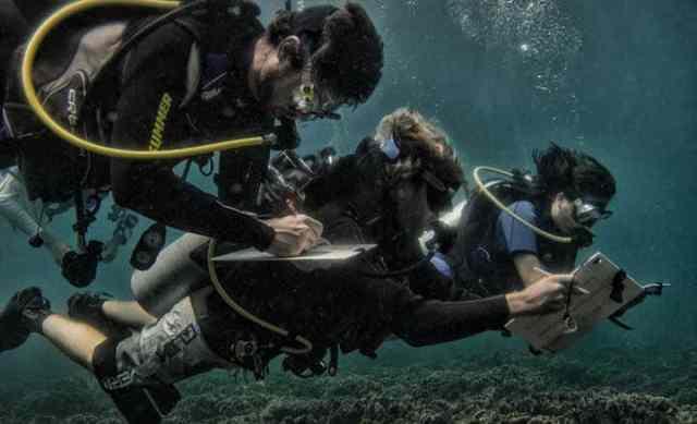 teaching marine conservation