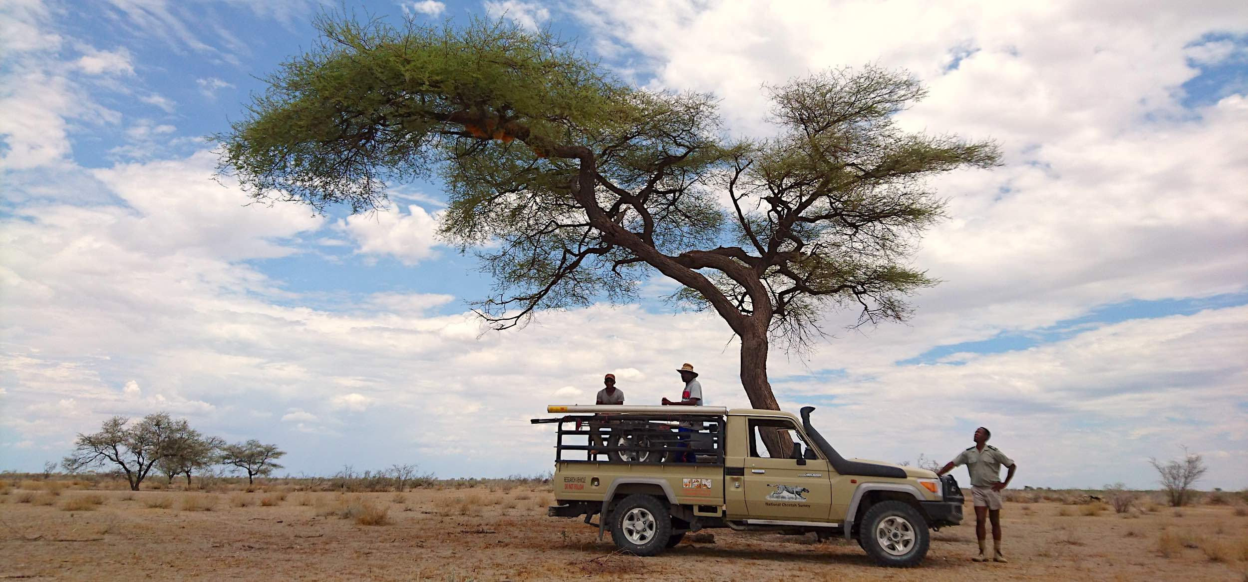 Three men and a Toyota Landcruiser parked under a large tree in an otherwise desertlike environment.
