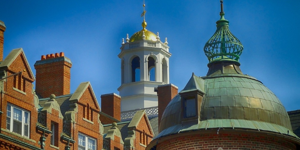 Out of 236 Harvard professors surveyed, guess how many identify as even a little 'conservative' (1)