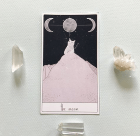 cat_tarot_33