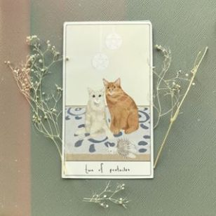 Cat_tarot_11
