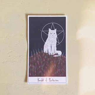 Cat_tarot_8