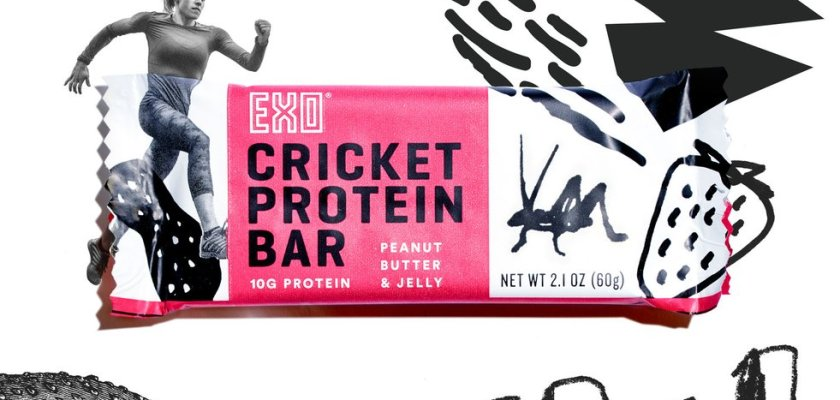 EXO Bar Recall Exo Protein Bars Cricket Protein Bars Consider The Consumer