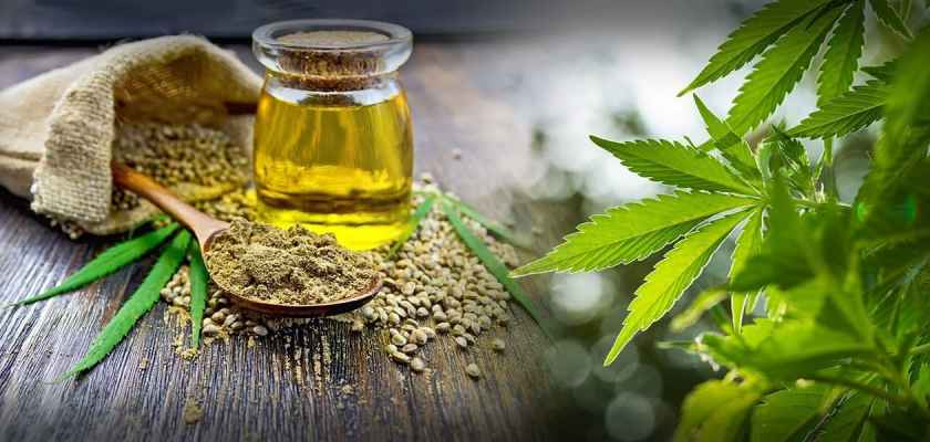 How To Shop For CBD consider the consumer