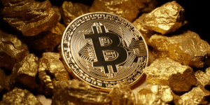 What is Bitcoin Gold Consider The Consumer