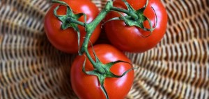 Cento Lawsuit; San Marzano Tomato False Claims