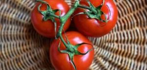 Cento Lawsuit; San Marzano Tomato False Claims