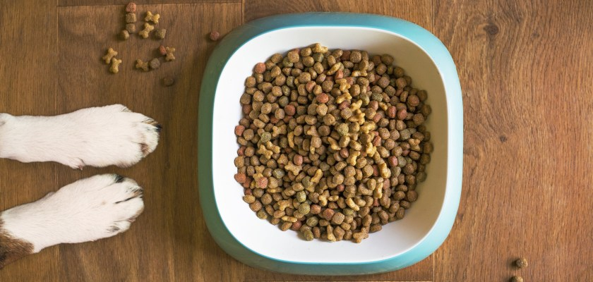 Nutro Dog Food Class Action Lawsuit Nutro Dog Food Lawsuit Consider The Consumer