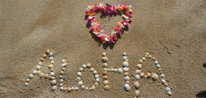 All About the Hawaiian Host Class Action Lawsuit Consider The Consumer