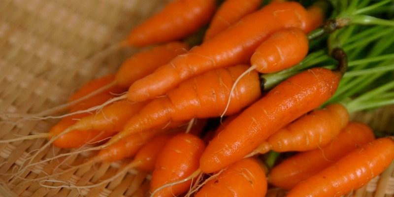 Baby Carrots Recall 2021 - Grimmway Farms, O Organics, Bunny Luv & Cal-Organic Recall Their Carrots Over Salmonella