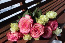 Cosa significa sognare una rosa o sognare rose?