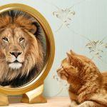 Que Es Y Como Tener Autoconfianza – EJERCICIOS