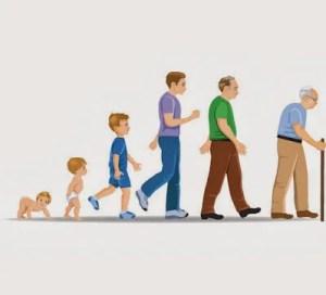 cuales son las etapas del desarrollo humano