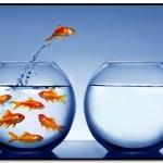 ¿Cuáles Son Las Etapas Del Proceso De Cambio Personal?