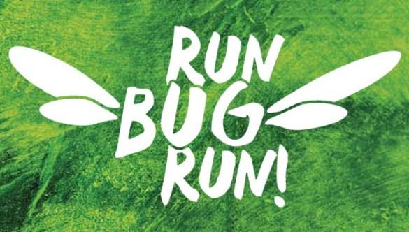 Run Bug Run!