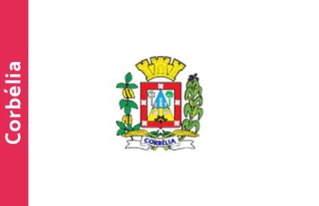 corbelia bandeira brasao cidade parana