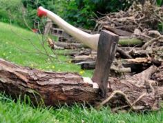 axe-to-root-295
