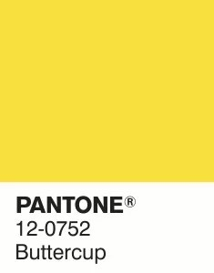 Image result for pantone buttercup