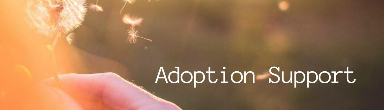 Adoption Support - Constructive Parenting, PLLC, Charlotte NC