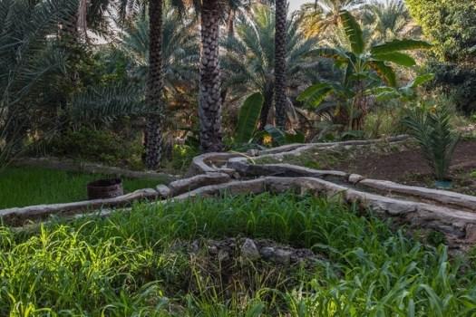 The last Omani juge of water