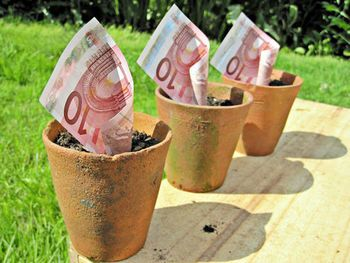 minibond-obbrobrio-all-italiana