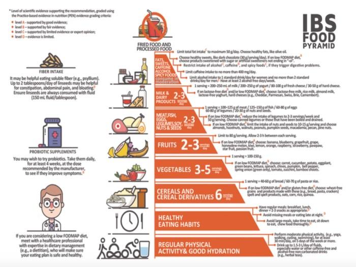 Pirámide dieta SII