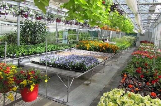 Emploi – Enseignant(e) en horticulture et environnement pour Cégep Joliette