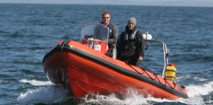 IWDG RIB on a basking shark survey