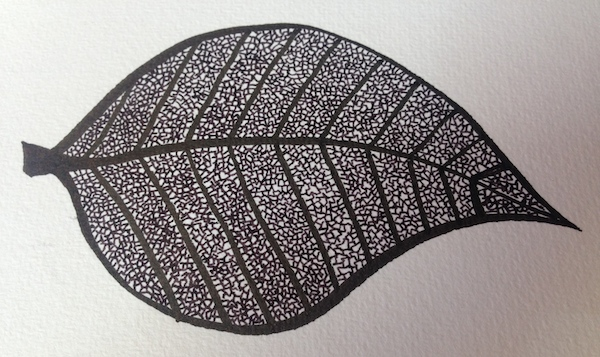 Leaf – an exercise in patience