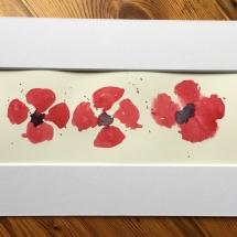 poppy-2017-5