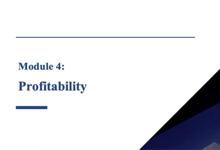 Module 4: Profitability