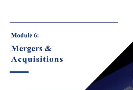 Module 6: Mergers and Acquisitions