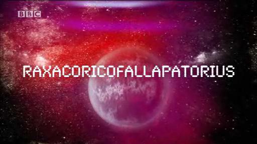 Raxaccoricofallapatorius (1/2)