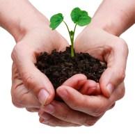 Aktieägartillskott Shareholder contribution webinar webbinarium