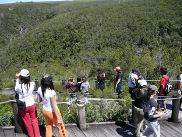 FOTO 3.1_alumnos en pasarela de quebrada_2007PKE