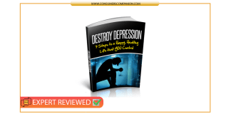 Destroy Depression System Review