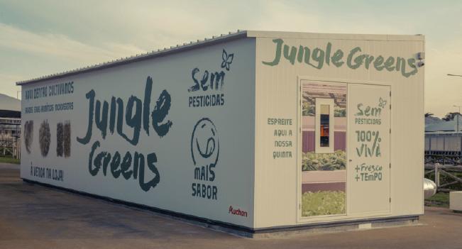 Jumbo cultiva vegetais e aromáticas na própria loja