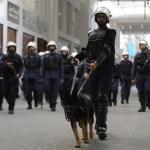 """Policía de Baréin arresta a 116 sospechosos de terrorismo """"apoyados"""" por Irán"""