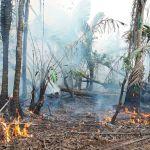 Patronal de Nicaragua ofrece su ayuda para lograr más medios contra incendio