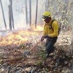 Durango castigado por incendios forestales