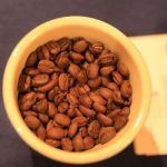 Más de 150 muestras compiten en concurso por ser el mejor café de Honduras