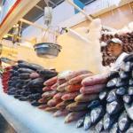 Expertos piden mejorar la producción de pescado para reducir la malnutrición