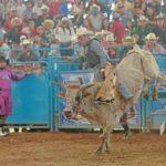 Adrenalina pura en el Lienzo charro con el Rodeo Extravaganza