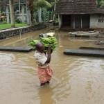 Las inundaciones en el sur de India causan más de 300 muertos en tres meses