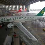 Ethiopian Airlines suspende el uso del Boeing 737 MAX 8 tras el accidente
