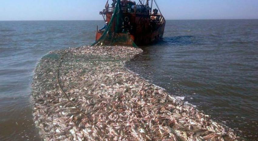 Gobierno Extendieron el plazo de pesca de corvina rubia y abrieron el registro de permisos fluviales
